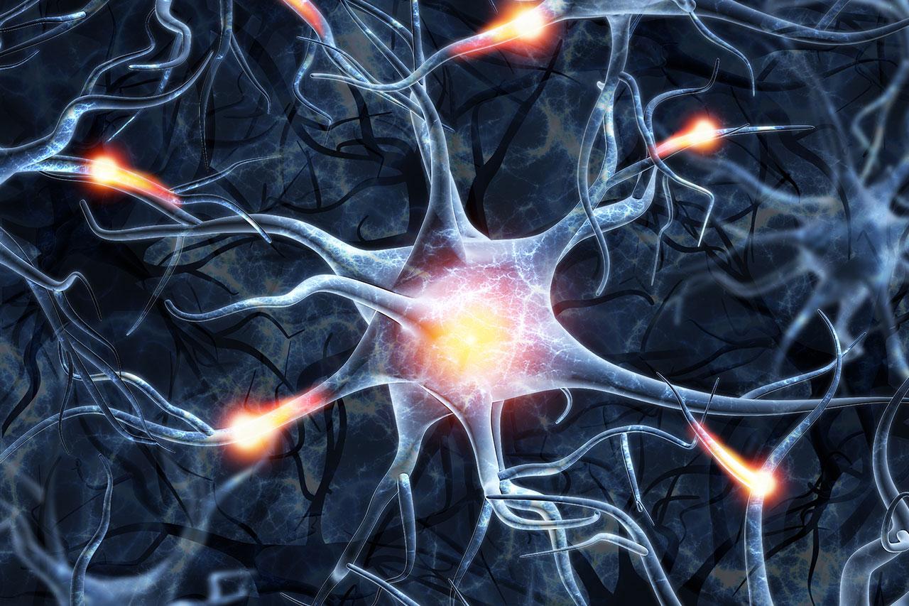 שיקום נוירולוגי פרטי